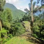 Сьюдад-Пердида — заброшенный город Тайронов в Колумбии